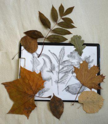 Listy pro účely kvízu okopírujte na papír pomocí frotáže.